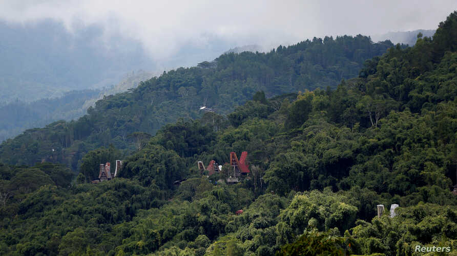 Traditional Toraja houses are seen in a forest near Rantepao, North Toraja, South Sulawesi, Indonesia, Sept. 13, 2017.