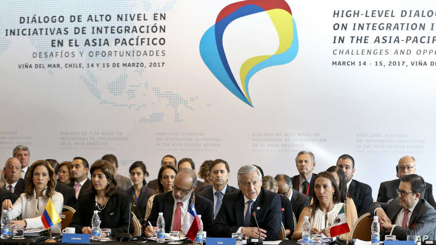Chile's Foreign Minister Heraldo Munoz speak during the Trans-Pacific meeting in Vina del Mar, Chile, March 15, 2017.