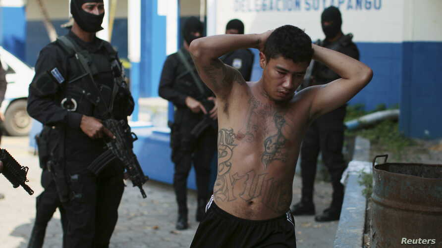 One of 13 suspected members of the 18th street gang is presented to the media after being arrested by the police under the charges of homicide and terrorism, in Soyapango, El Salvador, March 31, 2016.