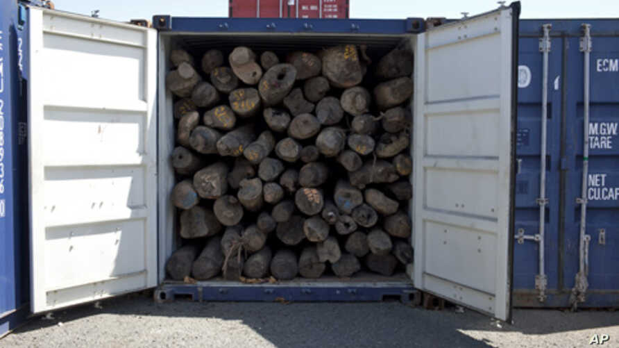 Shipment of suspected illegal Rosewood logs in the port of Vohemar, Madagascar