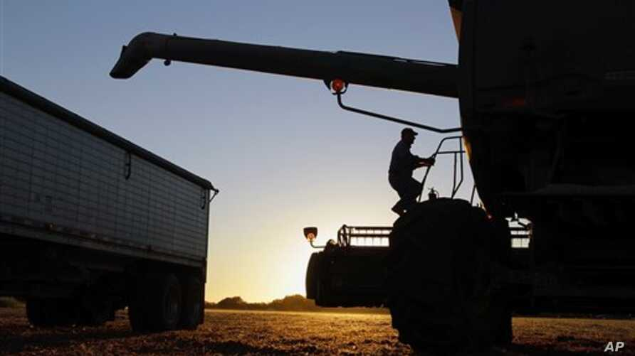 Central Illinois farmer Bob Hogan climbs back into his combine while harvesting soybeans in Pawnee, Illinois, October 7, 2010 (file photo)