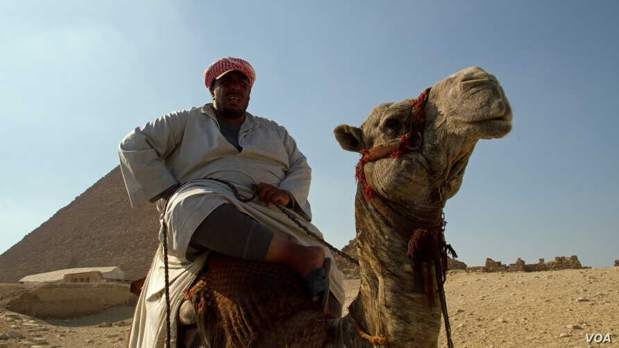 A man sits on his camel in front of the Pyramids at Giza, Egypt, July 13, 2013. (A. Arabasadi/VOA)
