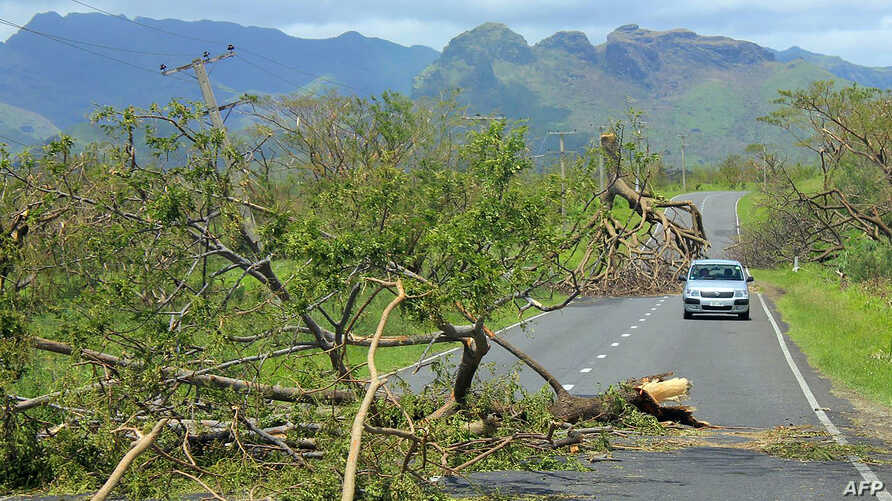 This undated handout photograph released on February 22, 2016 by the Fiji government shows a car driving past uprooted trees following Cyclone Winston in Fiji's western division. Tourists began fleeing cyclone-ravaged Fiji on February 22 and aid effo