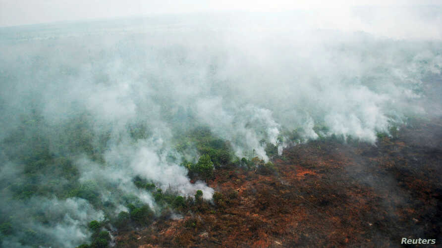 A forest fire is seen burning from a helicopter belonging to the Indonesian National Board of Disaster Management (BNPB) in Pelalawan, Riau province, Sumatra island, Indonesia, June 10, 2016 in this photo taken by Antara Foto.