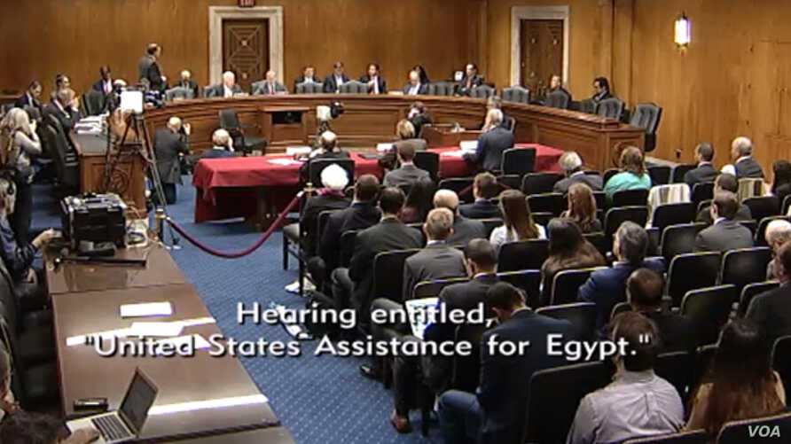 A screengrab from a live stream of a bipartisan panel of experts on Egypt-U.S. relations, April 26, 2017.