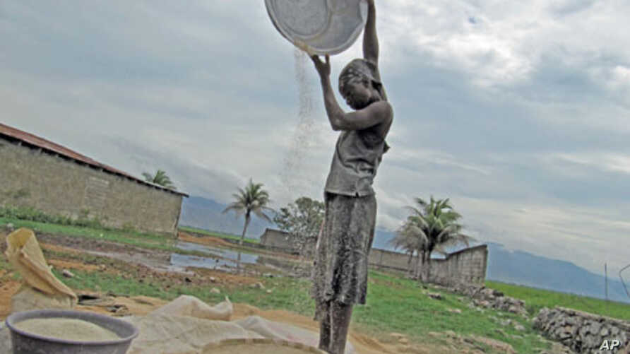 Rice farmers can be adversely affected by food aid.
