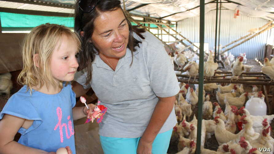 Farmer Ruth Mylroie witnesses a chicken laying an egg with a young visitor during a school tour of New Harmony Farm