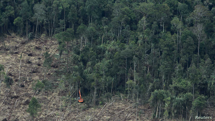 FILE - An excavator clears a forest in Indonesia's South Sumatra province, Oct. 16, 2010.