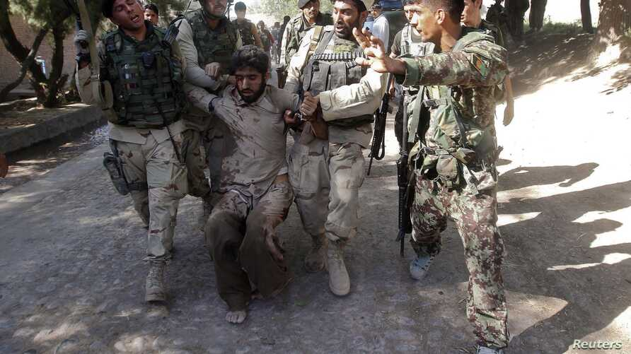 Afghan security forces escort a captured suspected Taliban insurgent during an operation in Jalalabad province in this June 19, 2013, file photo.