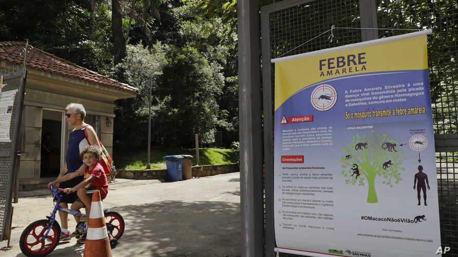A banner explaining how the yellow fever is transmitted hangs at the entrance of a park in Sao Paulo, Brazil, Jan. 16, 2018. The World Health Organization says human cases have been confirmed and hundreds more found in monkeys.