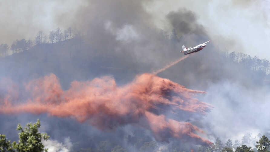 A firefighting plane drops fire retardant over a forest in the outskirts of La Londe-les-Maures on the French Riviera, July 26, 2017.