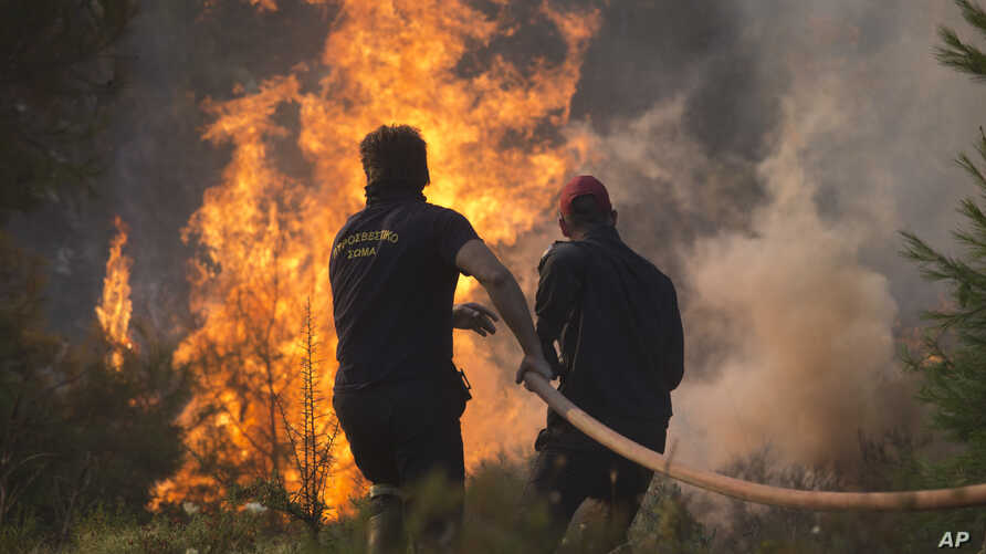 Firefighters try to extinguish the flames during a forest fire near Kapandriti north of Athens, Aug. 15, 2017.