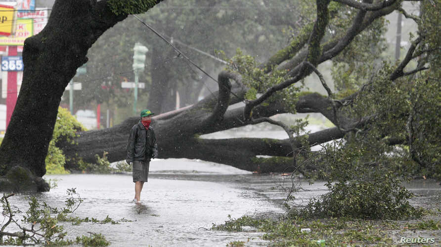 A man stands in front of an uprooted oak tree on Louisiana Avenue as Hurricane Isaac makes land fall in New Orleans, Louisiana, August 29, 2012.