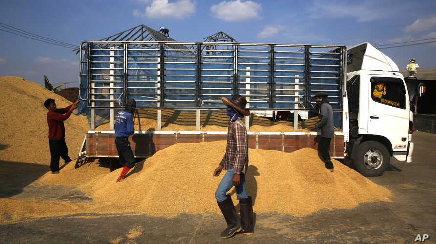 Workers unload rice from a truck at a rice collection center in the northeastern province of Roi Et , Thailand, Dec. 4, 2013.