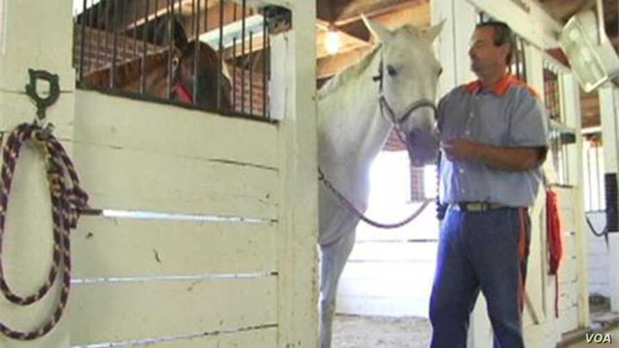Old Racehorses Give Prisoners Get Second