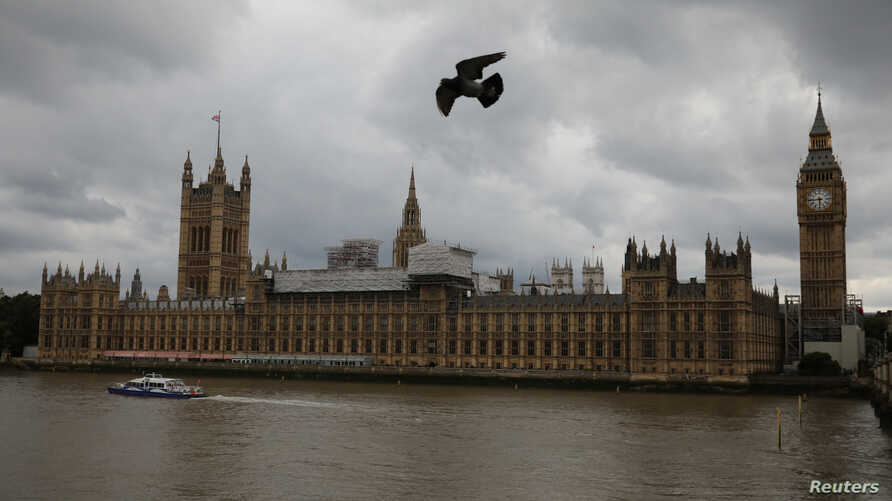 Birds fly past the Houses of Parliament, in central, London, June 24, 2017.  Britain's parliament was hit by a cyberattack on Saturday in which hackers tried to access email accounts, politicians and officials said.