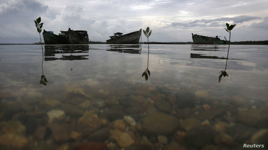FILE - Decaying wrecks of confiscated foreign trawlers rot in a shallow estuary near Penagi on Natuna Besar.