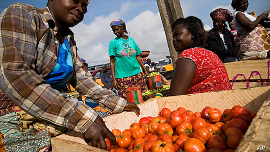 A vendor sorts tomatoes at the Agbogboloshie food market in Accra, Ghana (June 2008 file photo)