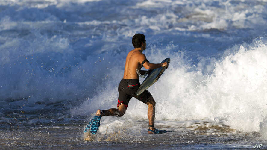 A bodeyboarder runs into the waves at Waimea Bay after the Memory of Eddie Aikau surfing contest was canceled, Feb. 10, 2016, in Haleiwa, Hawaii.