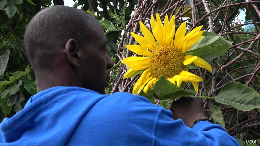 """Ron Finley has gained famed as a guerrilla or """"gangsta"""" gardener for his efforts to beautify unused strips of public land. Local officials now support the effort."""