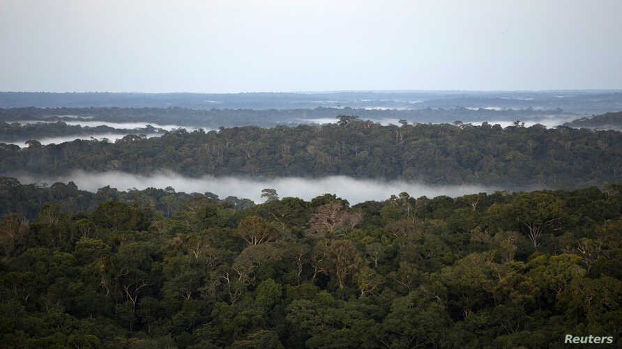 FILE - A view is seen from the Amazon Tall Tower Observatory (ATTO) in Sao Sebastiao do Uatuma in the middle of the Amazon forest in Amazonas state, Jan. 8, 2015.