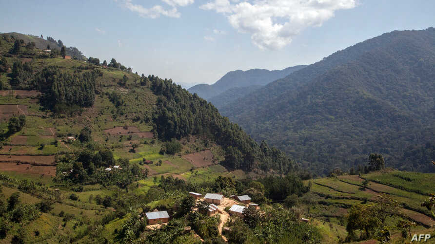 A general view shows habitations near Bwindi Impenetrable National Park, in Uganda, on May 24, 2014, one of the most densely populated rural area in the world.