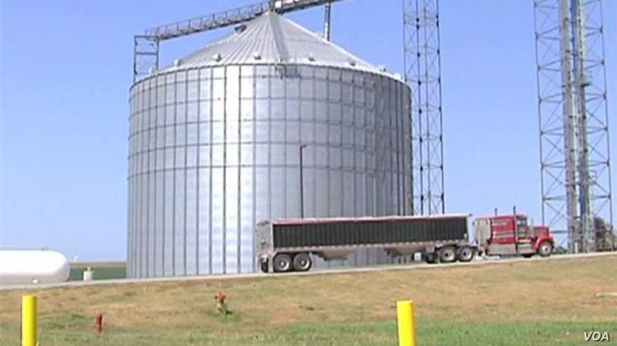 Drought Re-Ignites Food vs Fuel Fight