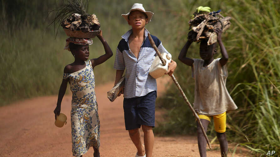 FILE - Children living in a cocoa-producing village walk back from the fields carrying wood and food stuffs on their heads on the outskirts of the town of Oume, Ivory Coast, June 30, 2005.