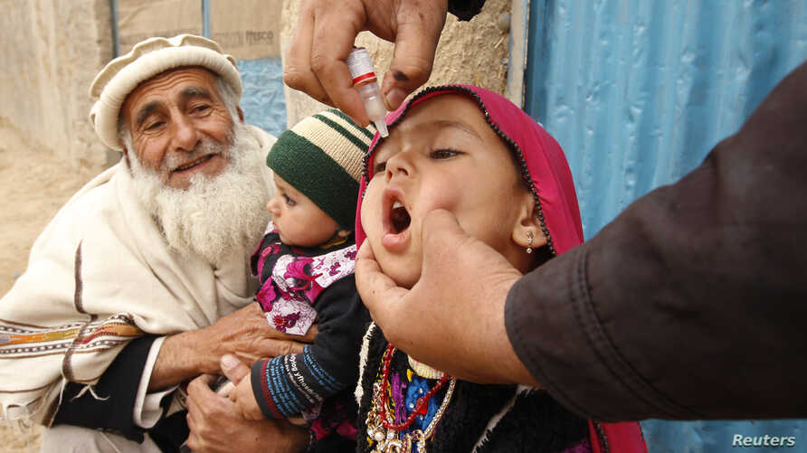 A child receives a polio vaccination during an anti-polio campaign on the outskirts of Jalalabad, March 16, 2015.