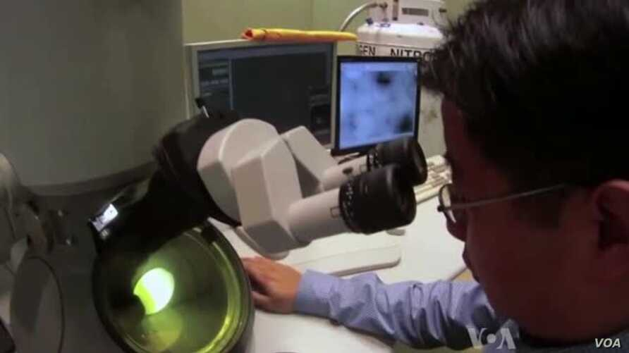 High-Tech Images Show How Viruses Infect Cells