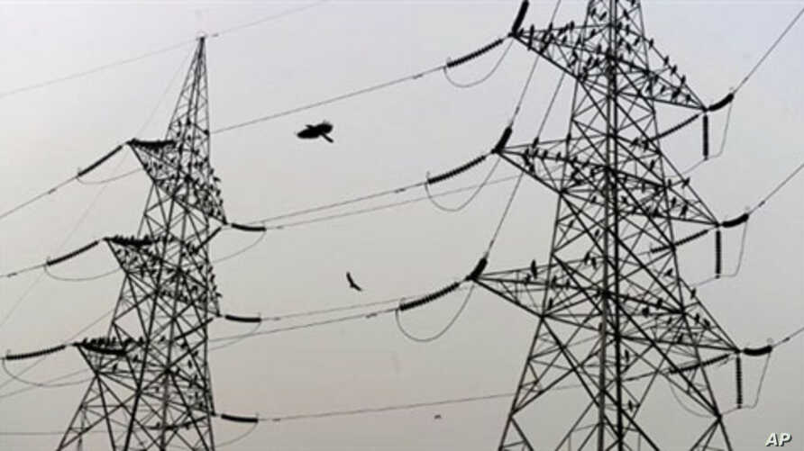 Birds sit on high voltage electricity towers on the outskirts of New Delhi (April 2010 file photo)