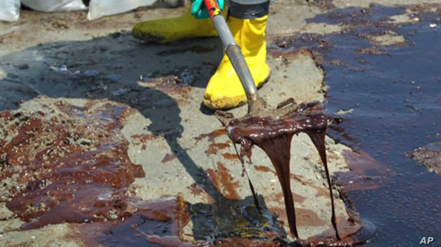 A BP cleanup crew shovels oil from a beach at Port Fourchon, Louisiana, 24 May 2010. (AFP Image)