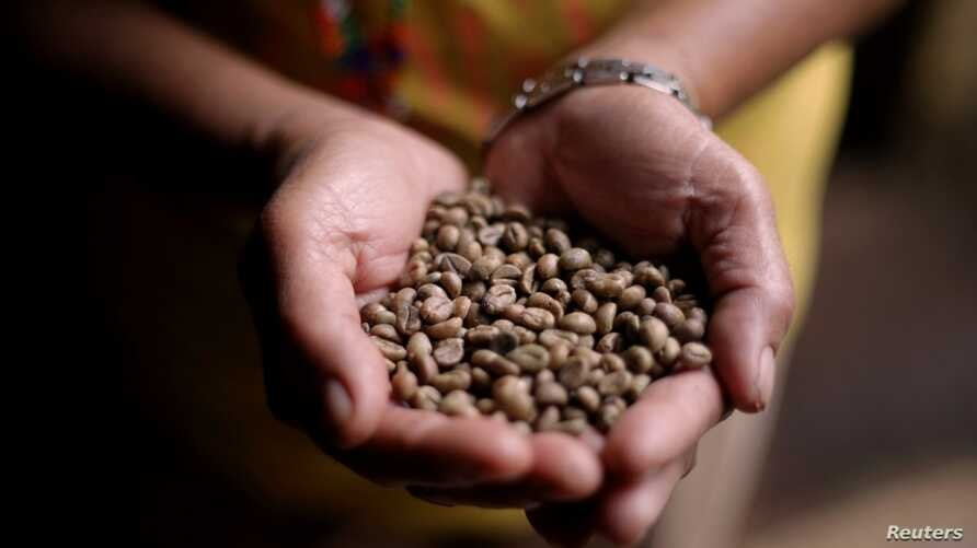 A woman from an indigenous community holds coffee beans grown by a cooperative in Mindanao, the Philippines, March 26, 2018.
