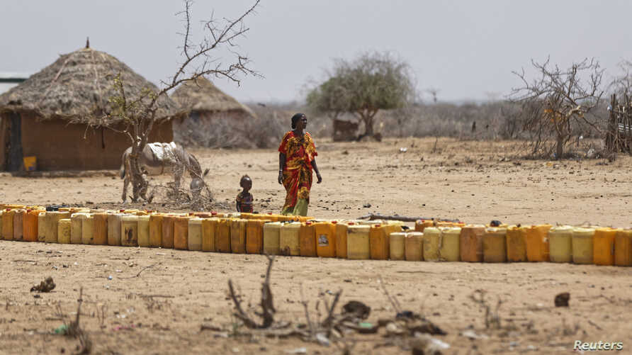 A woman and a child walk past a long line of plastic water containers queued up to be filled with water from a tanker, in the drought-affected village of Bandarero,  in northern Kenya, March 3, 2017.