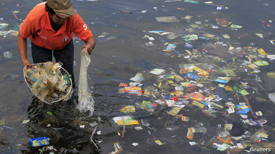 FILE - A government sanitary worker collects and segregates garbage, mostly plastic products, polluting Manila Bay, July 3, 2014.