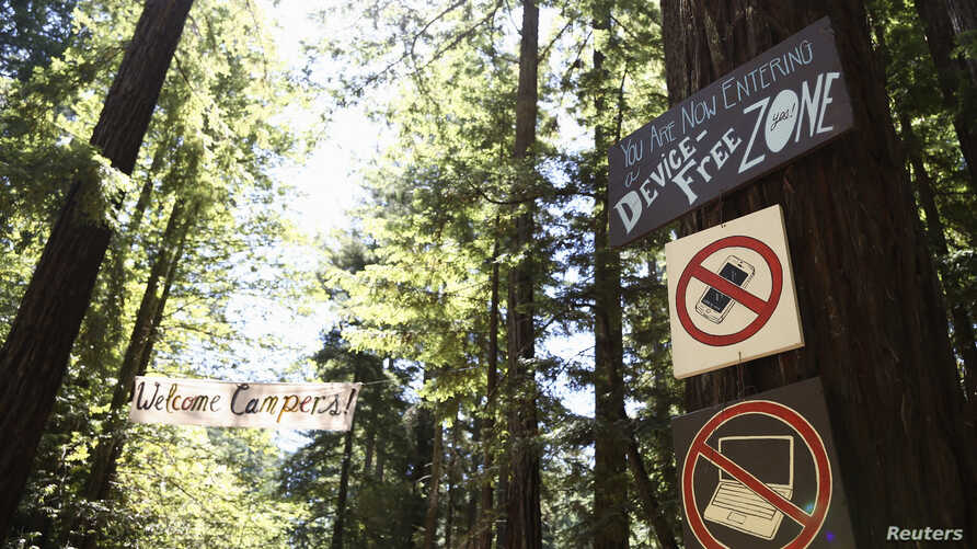 Signs on a giant Redwood tree alongside the entry road prepare arriving campers for their tech-free experience at Camp Grounded in Navarro, California, June 20, 2014.
