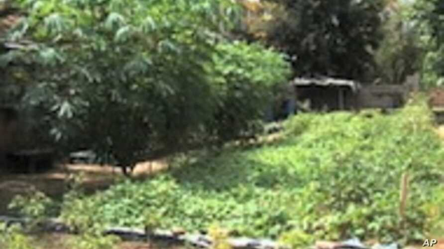 Organic Garden Grown for Senegalese AIDS Patients