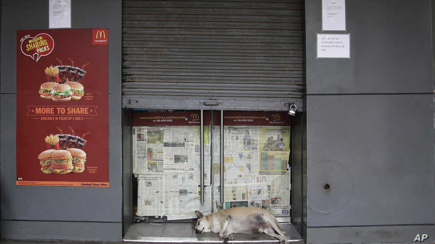 A stray dog sleeps at the entrance to a partially closed McDonald's outlet in New Delhi, India, Tuesday, Aug. 22, 2017.