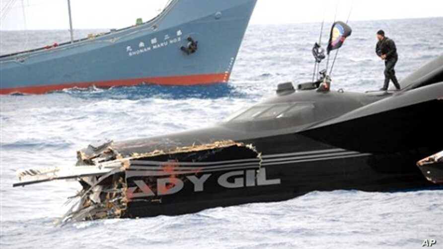 Handout photo taken  6 Jan 2010 by Sea Shepherd Conservation Society shows  Ady Gil after ramming incident with Japanese whaling vessel