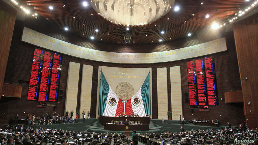 Members of the Mexican congress attend a session over the immunity of fellow congress man Julio Cesar Godoy in Mexico City, Dec. 14, 2010.