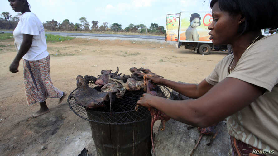 A woman dries bushmeat - which includes animals such as bats, antelopes, squirrels, porcupines or monkeys - along the highway near Yamoussoukro, Ivory Coast, March 29, 2014.