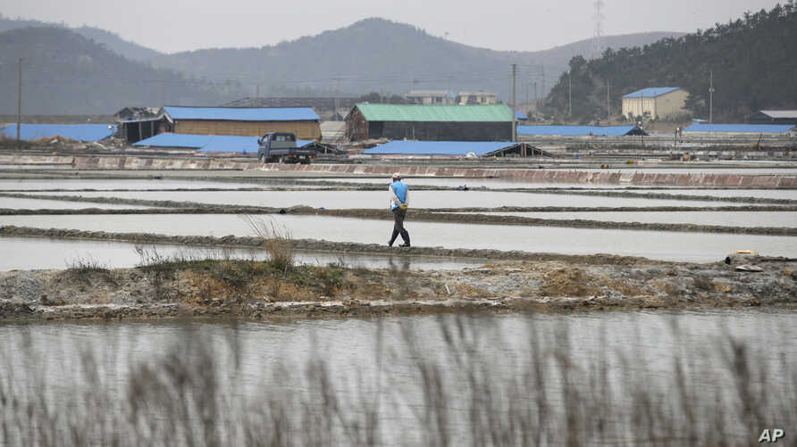 FILE - A man walks through a salt farm on Sinui Island, South Korea, April 3, 2014. A court ruled Sept. 8, 2017, that the South Korean government must pay 37 million won ($33,000) to a man who'd been held as a slave on the salt farm for several years