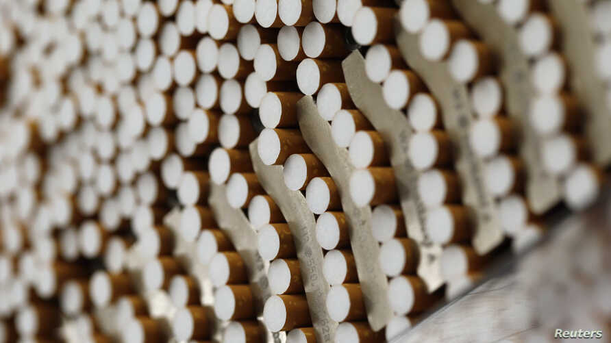 FILE - Cigarettes are seen during the manufacturing process in the British American Tobacco Cigarette Factory (BAT) in Bayreuth, southern Germany, April 30, 2014.