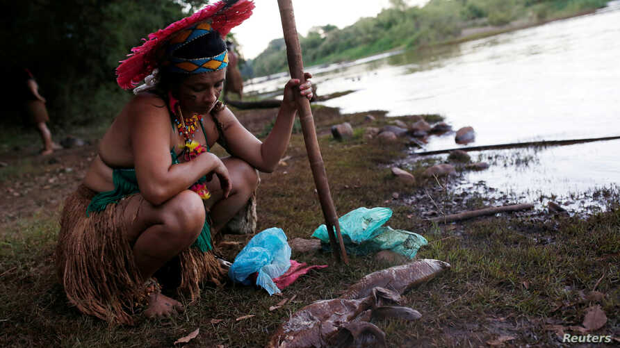 An Indigenous woman from the Pataxo Ha-ha-hae tribe looks at dead fish near Paraopeba river, after a tailings dam owned by Brazilian mining company Vale SA collapsed, in Sao Joaquim de Bicas near Brumadinho, Brazil, Jan. 28, 2019.