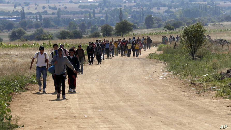 Migrants walk from the Macedonian border into Serbia, near the village of Miratovac, Serbia, Aug. 24, 2015.