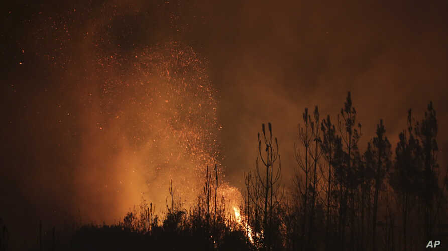 Sparks are blown by the wind from burning pine trees on the hills near Abrantes, central Portugal, Thursday night, Aug. 10, 2017.