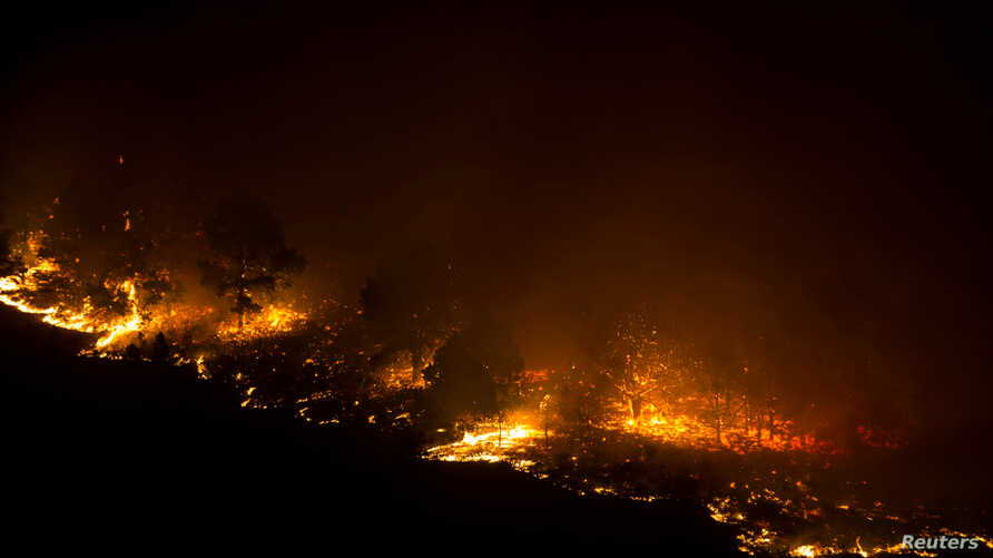 A forest fire burns out of control in Las Manchas, on the southwestern part of La Palma island, Spain, early August 5, 2016.
