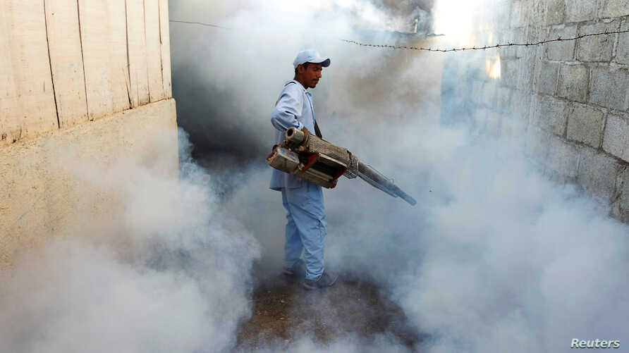FILE - A health ministry worker fumigates a house to kill mosquitoes during a campaign against dengue and chikungunya and to prevent Zika infection in Managua, Nicaragua Oct. 27,2016.