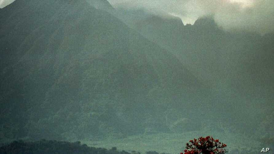 Seen from adjacent farmland, an afternoon shower rolls in over the volcanic mountains of Congo's Virunga National Park, home the most of the world's last remaining mountain gorillas, Tuesday, Sept. 23, 1997. Created in 1925, the park is the oldest in