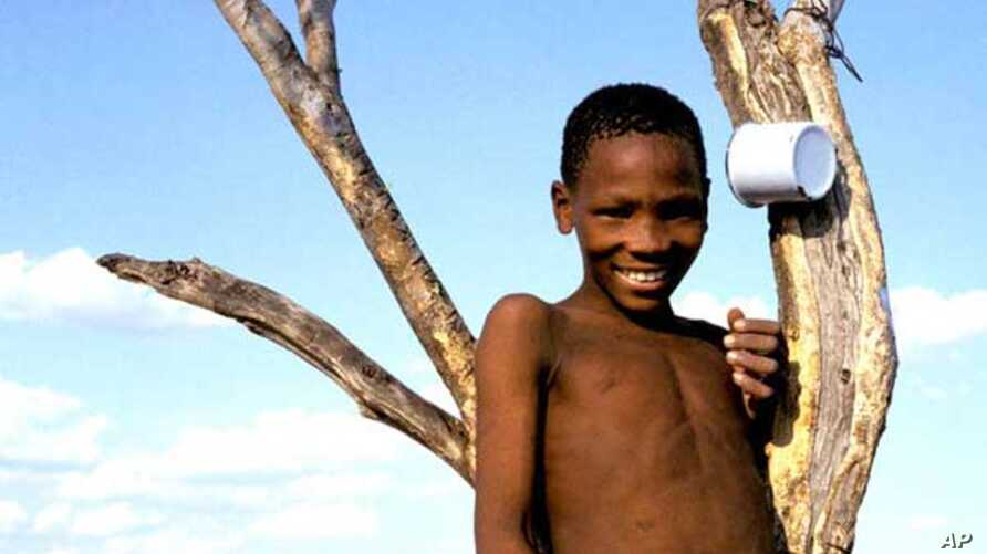 The Bushmen have survived across southern Africa for generations in harsh, arid environments